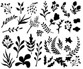 Vintage set of hand drawn tree branches with leaves and flowers on white background. Black silhouettes. Vector illustration. Website page and mobile app design