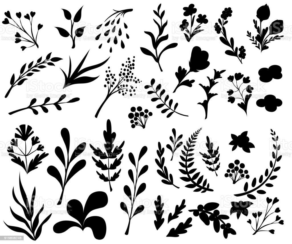 Vintage-Set von Hand gezeichnete Baum Zweige mit Blättern und Blüten auf weißem Hintergrund. Schwarze Silhouetten. Vektor-Illustration. – Vektorgrafik