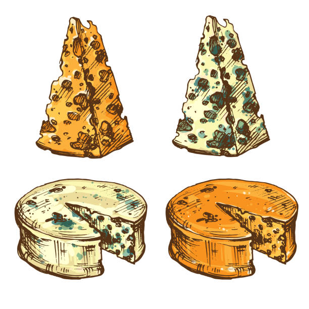 Moldy Food Illustrations, Royalty-Free Vector Graphics ...