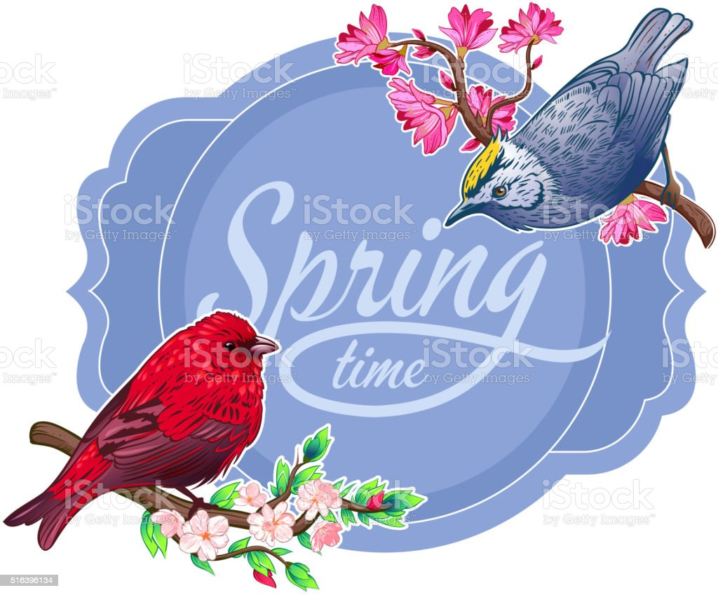 Vintage spring birds vector art illustration