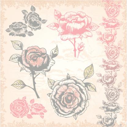 Hand-drawn vitnage floral illustration