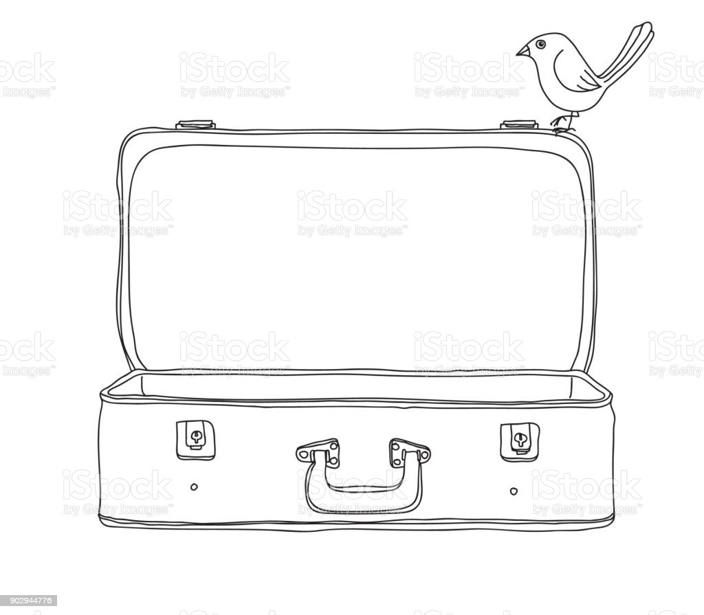 vintage suitcase and bird storage luggage empty and