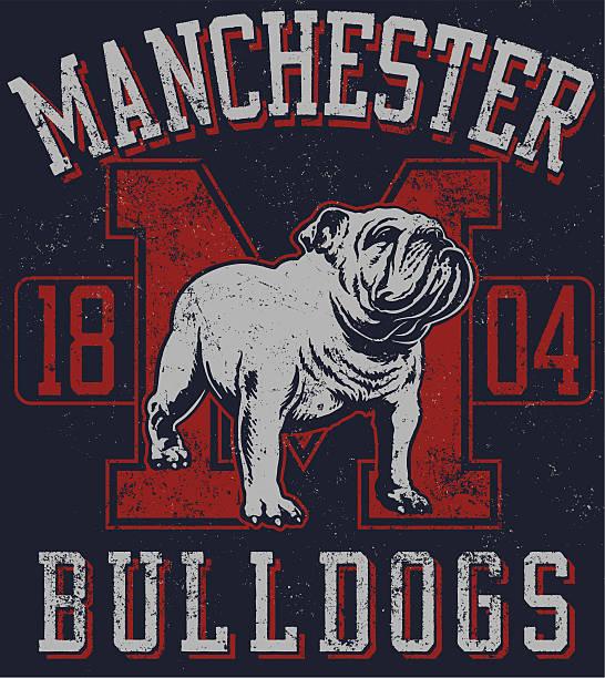 bildbanksillustrationer, clip art samt tecknat material och ikoner med vintage traditional bulldog mascot design - bulldog