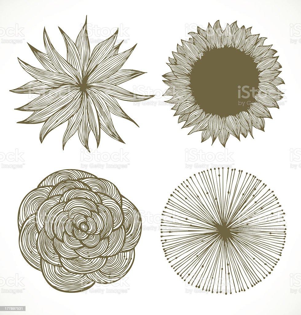 Vintage vector flowers set. Retro floral elements royalty-free stock vector art