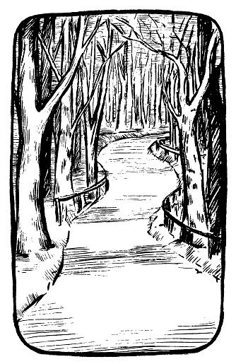 Vintage vector illustration Vertical background. The park sketch Park path. Footpath, road path concept. Line drawing. Engraving style. Design for poster, print, postcard, sticker, banner, t-shirt etc