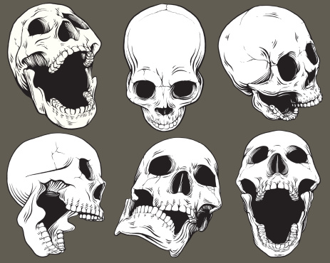 Vintage Vector Skull Collection
