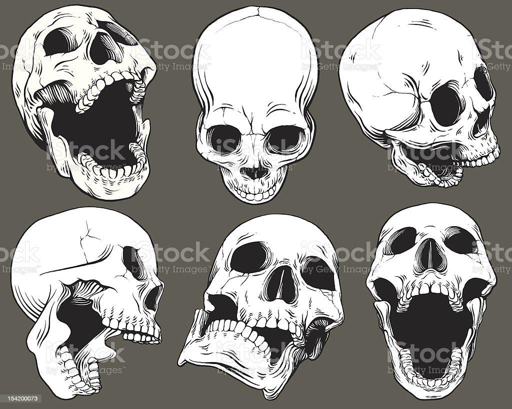 Vintage Vector Skull Collection vector art illustration