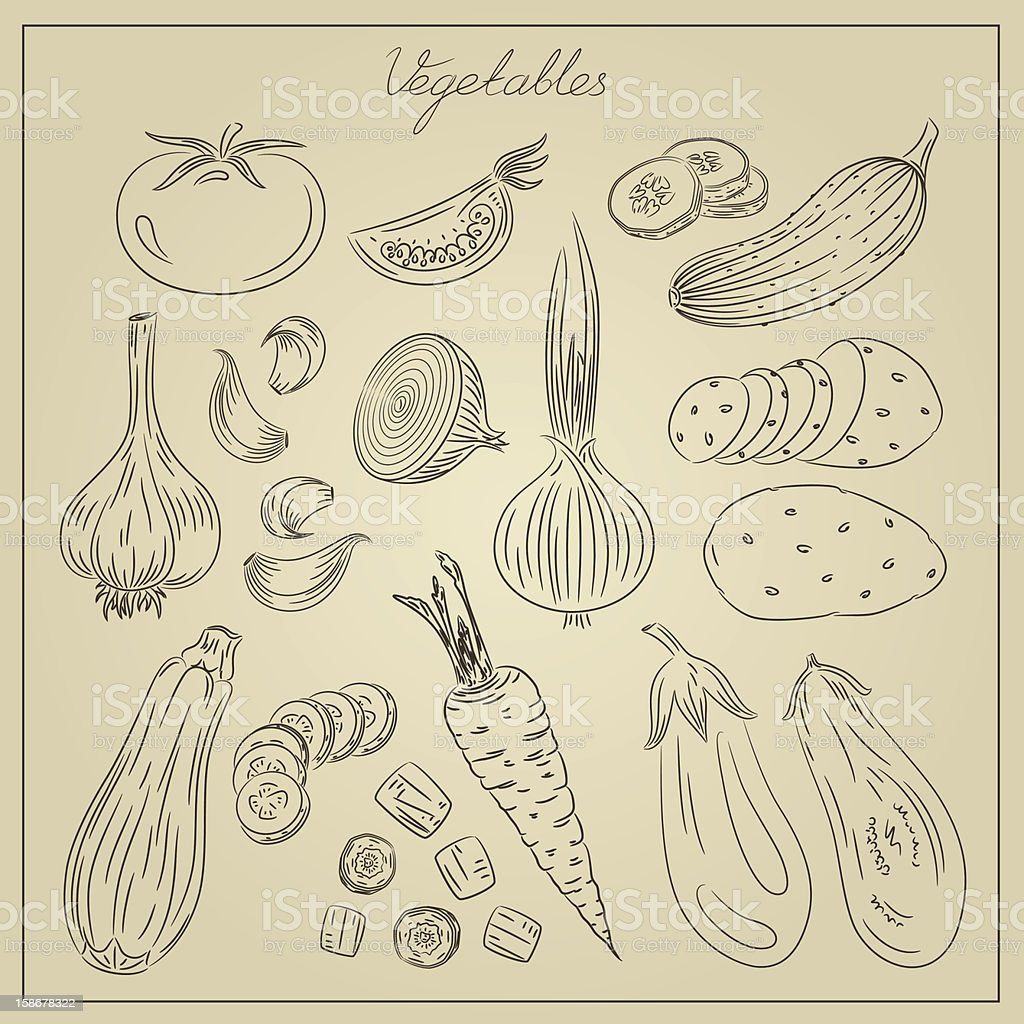 Vintage vegetables illustration royalty-free stock vector art