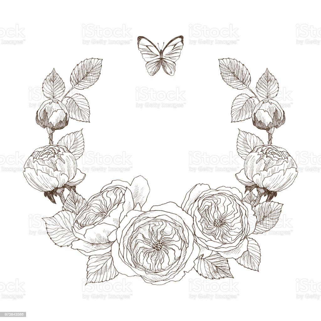 vintage victorian frame border monogram floral ornament engraved retro flower and butterfly