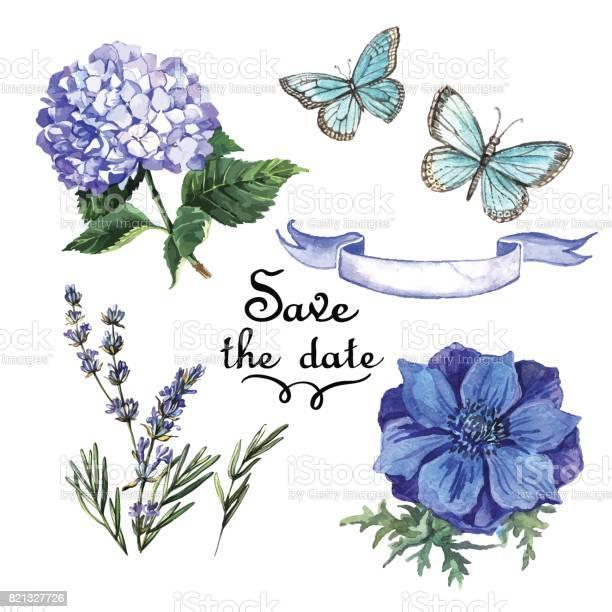 Vintage watercolor set blue watercolor flowers and butterflie vector id821327726?b=1&k=6&m=821327726&s=612x612&h=0bablizdtljfvoftkdox7pafl05txdvst sb6j67fci=