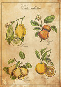 Vintage, weathered poster displaying four types of fruit