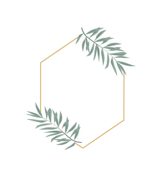 vintage wedding set with greenery. vector illustration. wreath with leaves and twigs. - palm tree stock illustrations