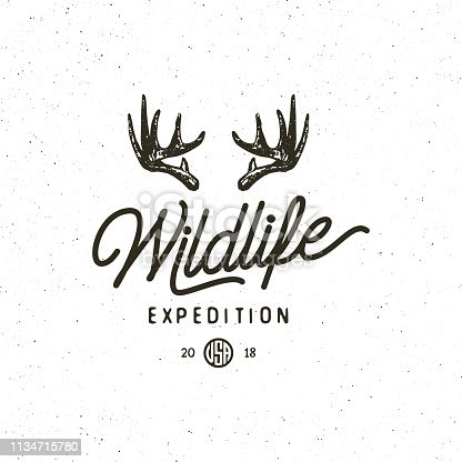 vintage wilderness logo. hand drawn retro styled outdoor adventure emblem, badge, design elements, logotype template. vector illustration