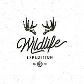 vintage wilderness logo. hand drawn retro styled outdoor adventure emblem, badge, design elements, logotype template. vector illustration