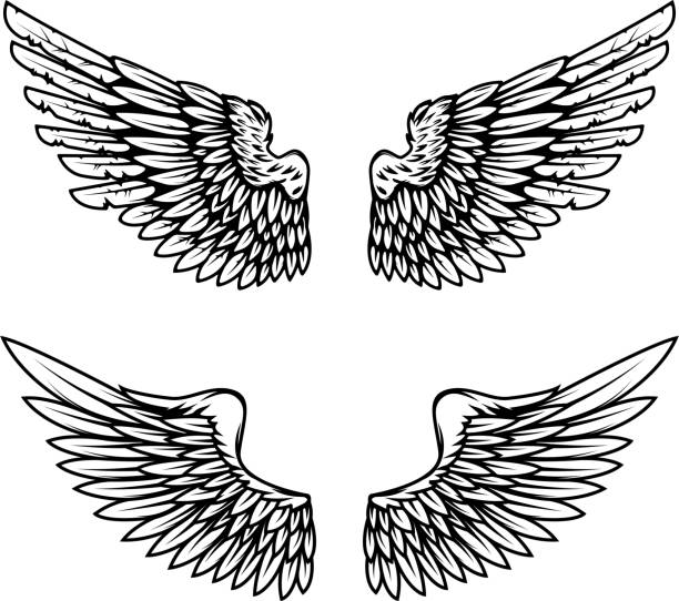 vintage wings isolated on white background. design elements for label, emblem, sign, brand mark. vector illustration. - angels tattoos stock illustrations, clip art, cartoons, & icons