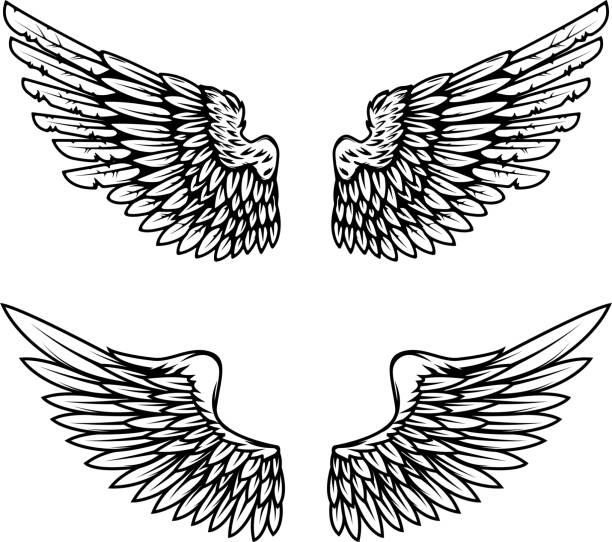 ilustraciones, imágenes clip art, dibujos animados e iconos de stock de alas vintage aisladas sobre fondo blanco. diseño de elementos de sello, emblema, señal, marca. ilustración de vector. - tatuajes de ángeles