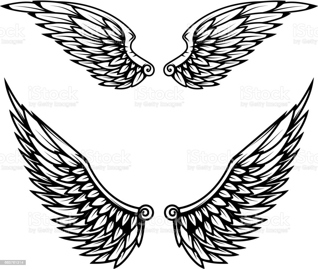vintage wings isolated on white background stock vector art more rh istockphoto com wind vectors idaho wings vector free