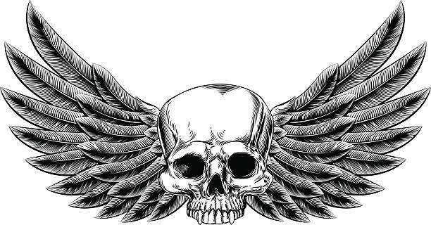 ilustraciones, imágenes clip art, dibujos animados e iconos de stock de cráneo vintage grabado en madera con aletas - tatuajes de alas