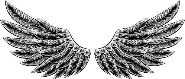 ilustraciones, imágenes clip art, dibujos animados e iconos de stock de alas vintage grabado en madera - tatuajes de ángeles