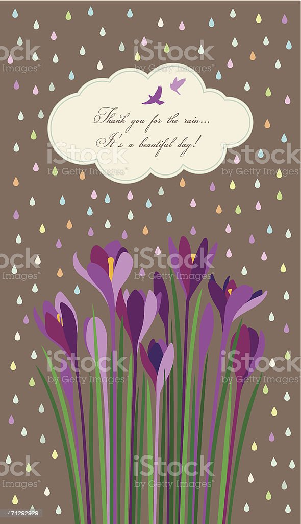 Violet Crocuses under light rain of colorful drops