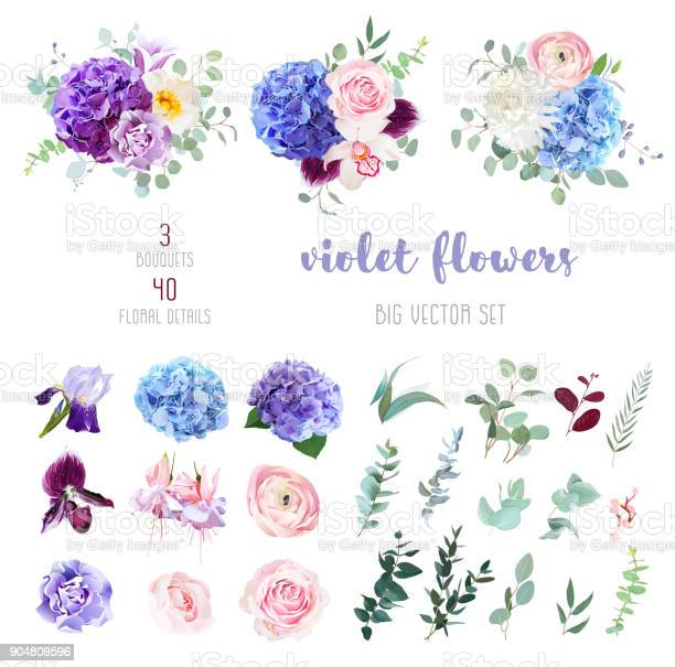 Violet purple and blue flowers and greenery big vector set vector id904809596?b=1&k=6&m=904809596&s=612x612&h=nuiyzzhgjojwi5nv3c96zjrh9xke0zm2hu4rwjio9wm=