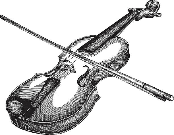 stockillustraties, clipart, cartoons en iconen met violin - viool