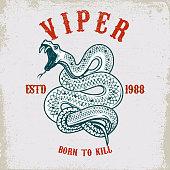 Viper snake illustration on grunge background. Design element for poster, card, t shirt.