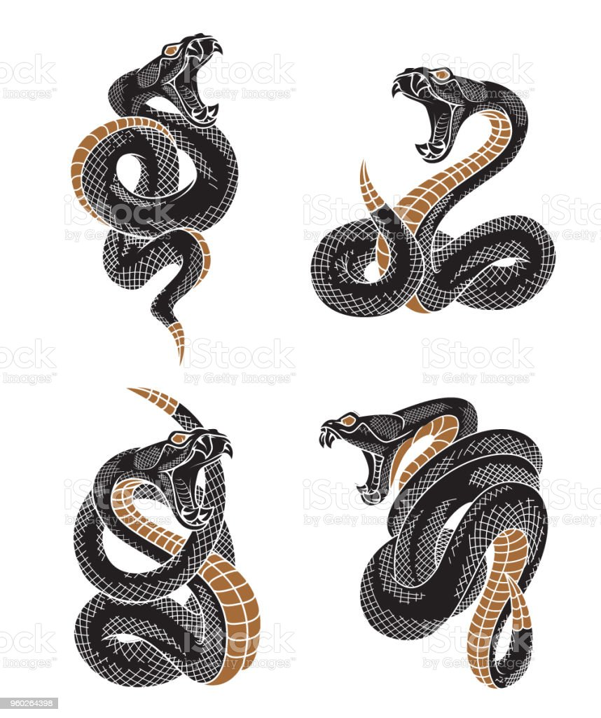 Jeu de serpent vipère. - Illustration vectorielle
