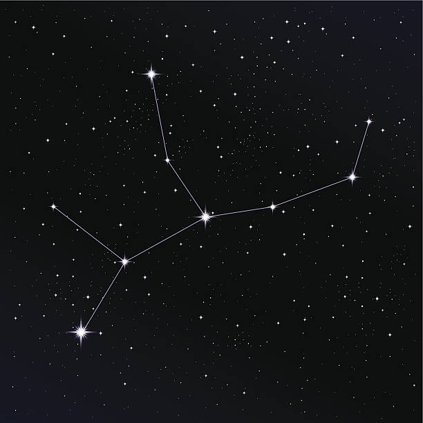 jungfrau constellation - jungfrau stock-grafiken, -clipart, -cartoons und -symbole