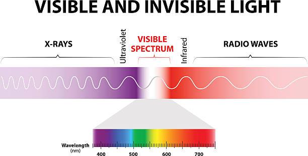 bildbanksillustrationer, clip art samt tecknat material och ikoner med visible and invisible light - spektrum