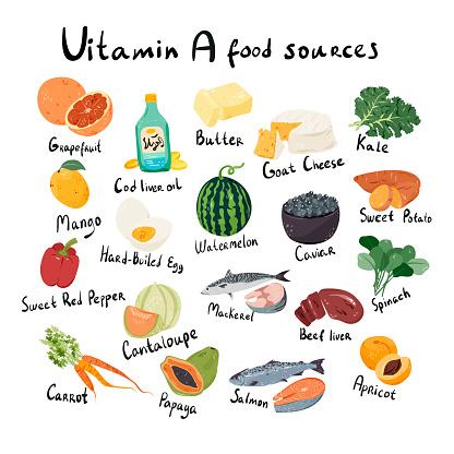Vitamin A, retinol food sources cartoon illustration.