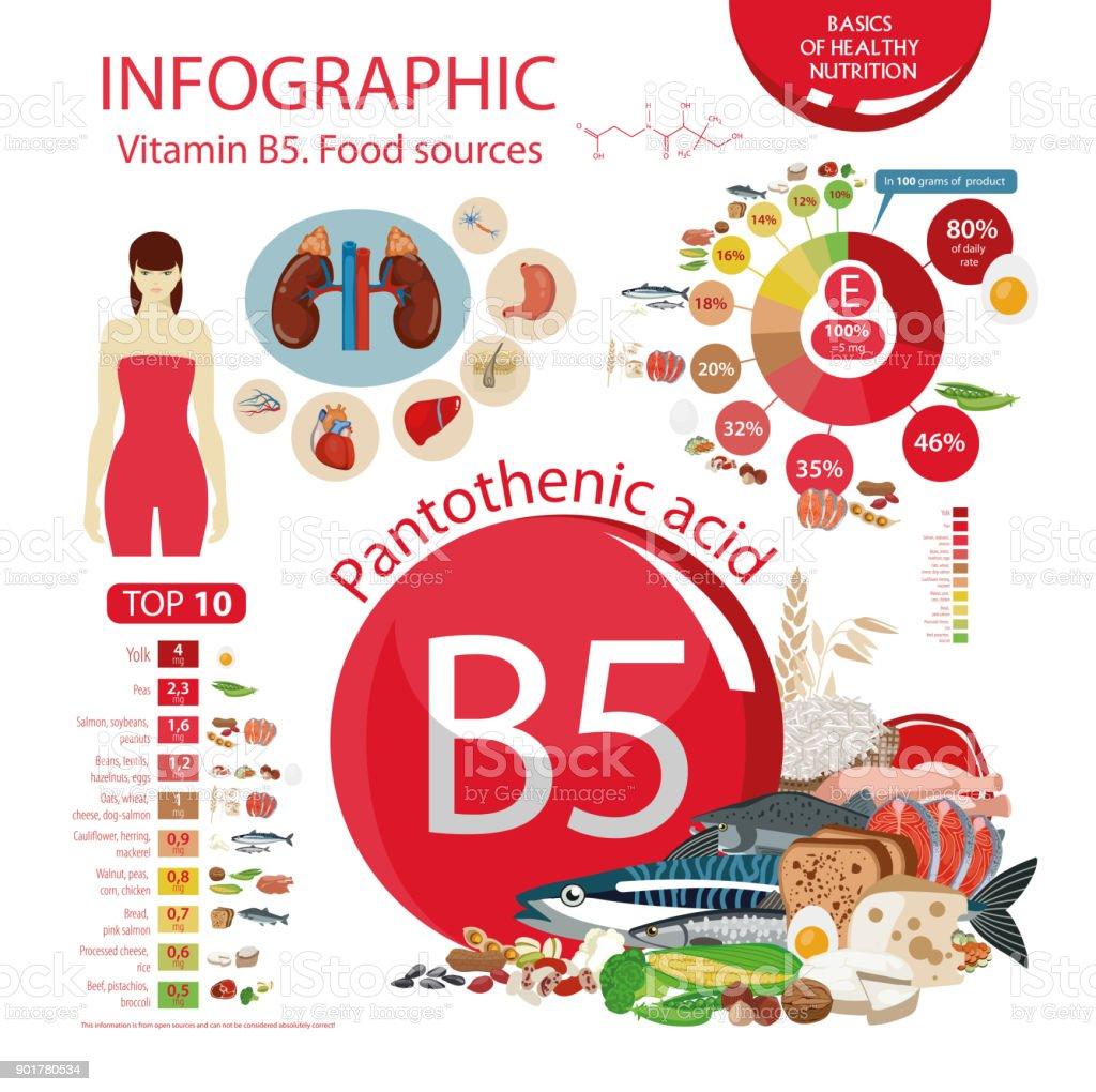 Vitamin B5 (Pantothenic acid). vector art illustration