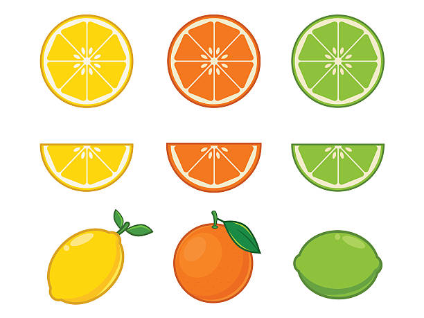 Vitamin C fruits Vitamin C fruits lime stock illustrations