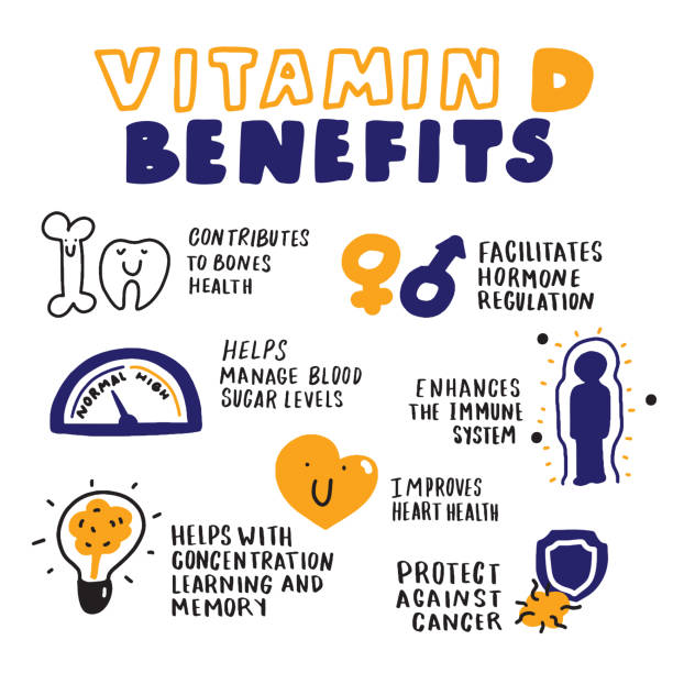 vitamin d benefits. hand drawn infographic. sketch style. vector. - vitamin d stock illustrations