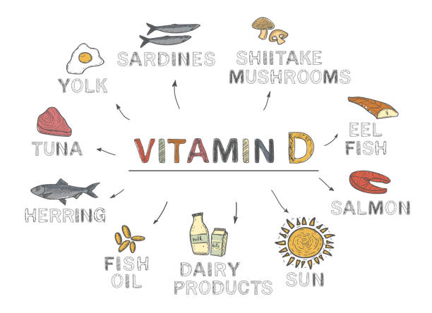 vitamin d, infographics. foods rich in vitamin d. natural products on white background - vitamin d stock illustrations