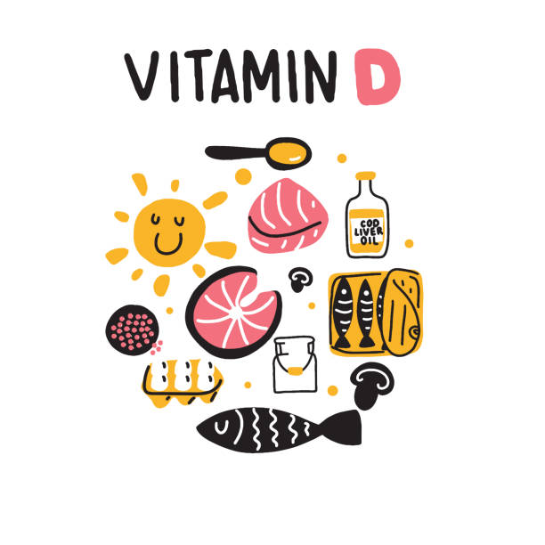 vitamin d sources. hand drawn circle illustration of different food rich of vitamin d. vector. - vitamin d stock illustrations