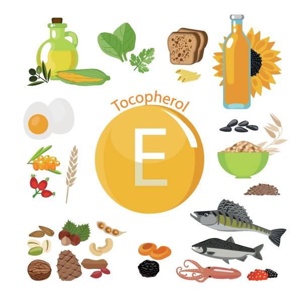 stockillustraties, clipart, cartoons en iconen met vitamine e of tocoferol. voedselbronnen. - spoorelement