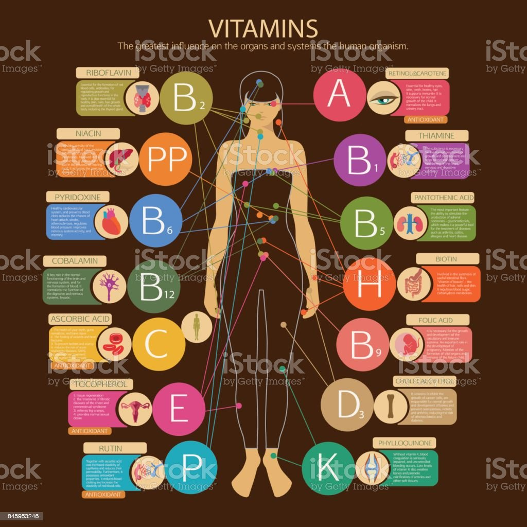 Vitamins and their impact vector art illustration
