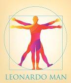 Vitruvian Man - Illustration