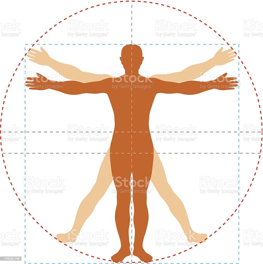 royalty free vitruvian man clip art vector images illustrations rh istockphoto com vitruvian man vector free vitruvian man vector shutterstock