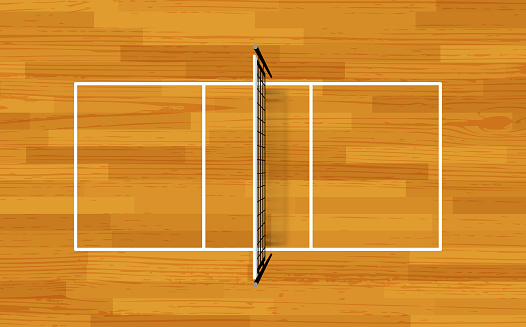 Volleyball fireld with markings and wood texture. Vector with volleyball net and shadow