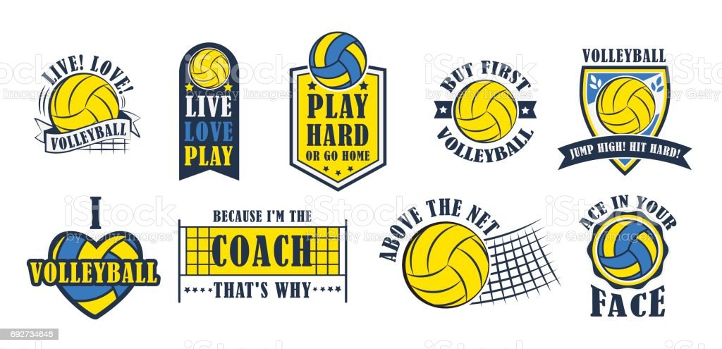 Volleyball icon set, vector illustration vector art illustration