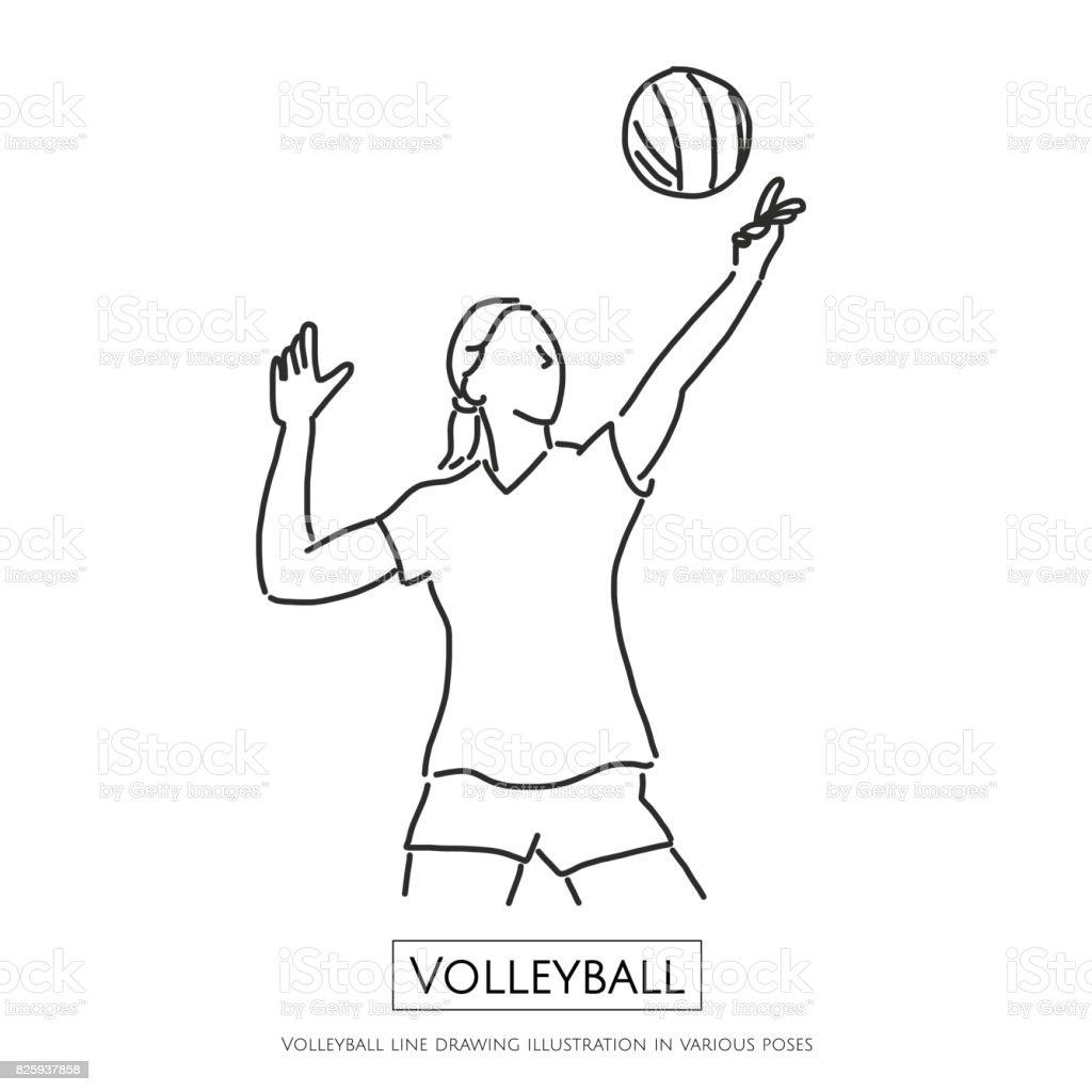 Drawing Lines In Xna : Ilustración de dibujo voleibol en diferentes poses