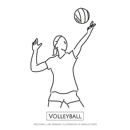 Volleyball Line Drawing Illustration In Various Poses Line