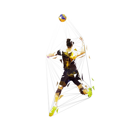 Volleyball player smashes the ball, isolated vector low polygonal illustration, geometric drawing