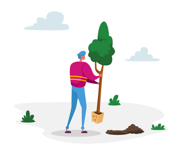 Volunteer Character Saving Nature, Ecological Issues, Global Warming, Environment Care and Day of Earth Concept. Man Planting Tree to Ground in Garden, Eco Protection. Cartoon Vector Illustration Volunteer Character Saving Nature, Ecological Issues, Global Warming, Environment Care and Day of Earth Concept. Man Planting Tree to Ground in Garden, Eco Protection. Cartoon Vector Illustration water wastage stock illustrations