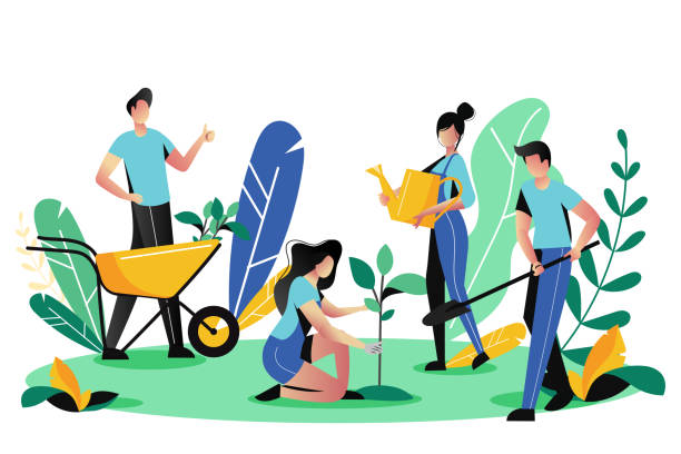 ilustrações de stock, clip art, desenhos animados e ícones de volunteering, charity social concept. volunteer people plant trees in park, vector illustration. ecological lifestyle - gardening