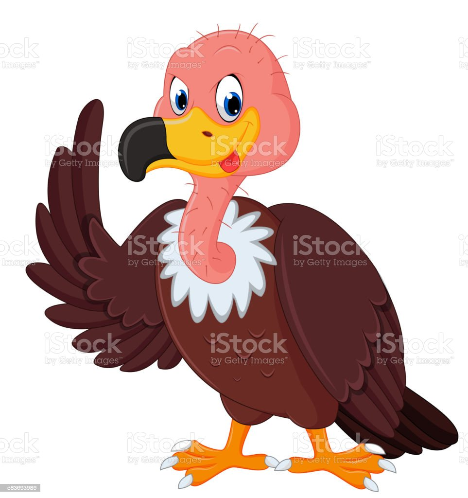 royalty free buzzard clip art vector images illustrations istock rh istockphoto com