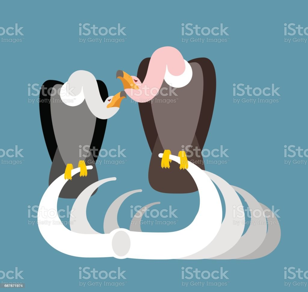Vulture on bones. Buzzard and skeleton. Scavenger birds and skull isolated vector art illustration