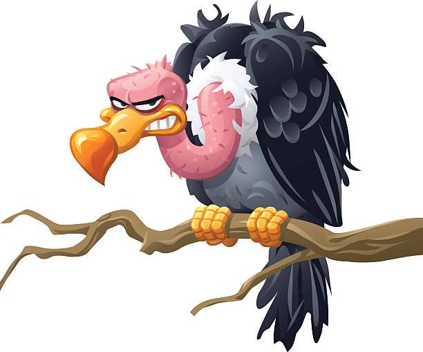 stockillustraties, clipart, cartoons en iconen met vulture sitting on a branch - aas eten